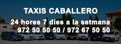 Taxis Caballero